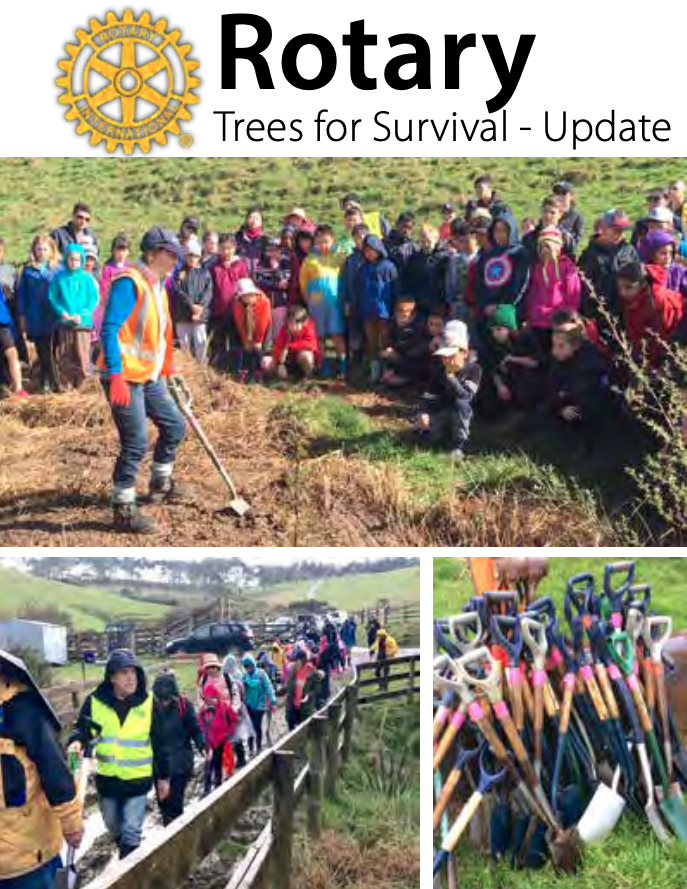 Rotary Trees for Survival - Update