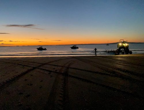 Browns Bay Fishing Competition 2021